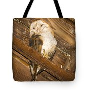 Stop Bothering Me Tote Bag by Jean Noren