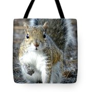 Stop Look And Listen Tote Bag