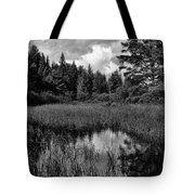 Storm Clouds Rolling In Over The Creek Tote Bag