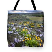Storm Over Wildflowers Tote Bag