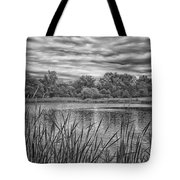 Storm Passing The Pond In Bw Tote Bag