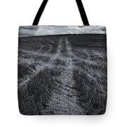 Storm Tracks Tote Bag