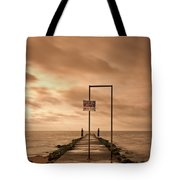 Storm Warning Tote Bag by Evelina Kremsdorf
