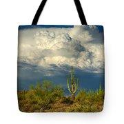 Stormy Desert Skies  Tote Bag