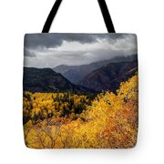 Stormy Fall Along The Alpine Loop - Utah Tote Bag