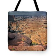 Stormy Skies In Canyonlands Tote Bag