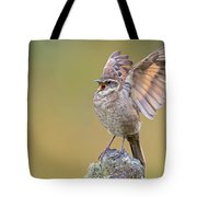 Stout-billed Cinclodes Tote Bag