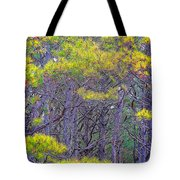 Straggly Pines Tote Bag