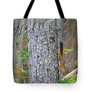 Straight Tail Squirrel Tote Bag