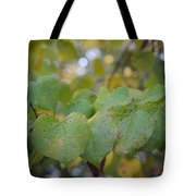 Stranded Hearts Of Autumn Tote Bag