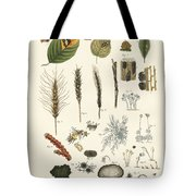 Strange Dusty And Thread Fungus Tote Bag