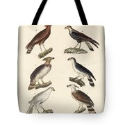 Strange Eagles Tote Bag