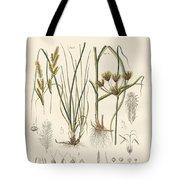 Strange Grasses Tote Bag