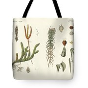 Strange Mosses Tote Bag