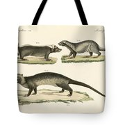 Strange Skunks Tote Bag