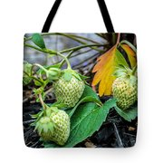 Strawberries - Soon To Be Picked Tote Bag