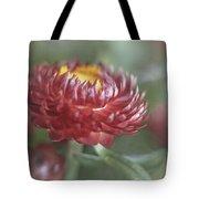 Strawflower Tote Bag