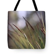 Straws In The Wind Tote Bag