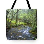 Stream Below Amicalola Falls Tote Bag