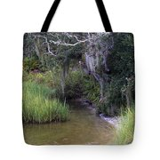 Stream To The Past Tote Bag