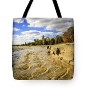 Streaming Change Tote Bag