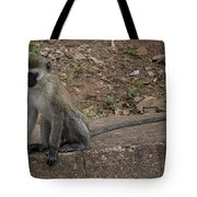 Street Monkey Tote Bag