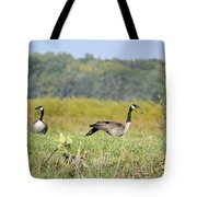 Stretching Out Tote Bag