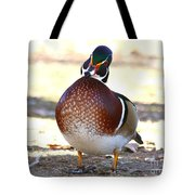 Like This Wood Duck Tote Bag