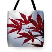 Striking Tote Bag
