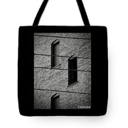 Guitar Frets And Strings Tote Bag
