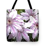 Striped Clematis Tote Bag