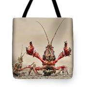 Striped Crayfish  Tote Bag