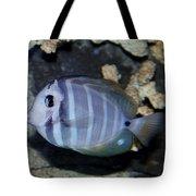 Striped Fish Tote Bag