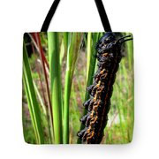 Striped Oak Worm Tote Bag