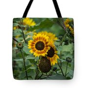 Striped Sunflower Tote Bag