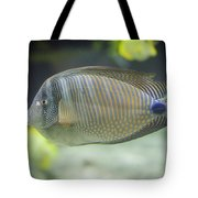Striped Tropical Fish Desjardini Tang Tote Bag