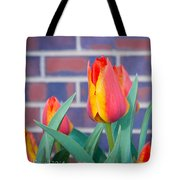 Striped Tulips Tote Bag