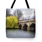 Stroll Along The Serpentine Tote Bag
