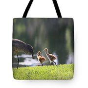 Stroll By The Pond Tote Bag