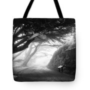 Stroll In The Fog Tote Bag by Valeria Donaldson