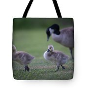 Strutting Our Stuff Tote Bag