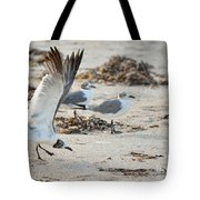 Strutting Seagull On The Beach Tote Bag