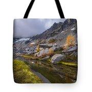 Stuart Range Meadows Reflection Tote Bag
