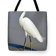 Stuck In The Sand Tote Bag by Lori Tambakis
