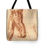 Studies For Haman Tote Bag