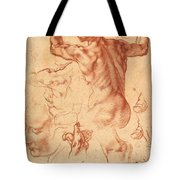 Studies For The Libyan Sibyl Tote Bag