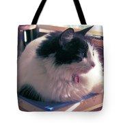 Studio Cat Tote Bag