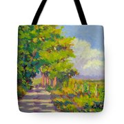 Study For Afternoon Shadows Tote Bag