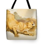 Study For Daniel In The Lions Den Tote Bag