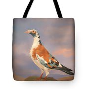 Study Of A Carrier Pigeon Tote Bag